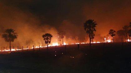 Incendios forestales en la provincia del Chaco