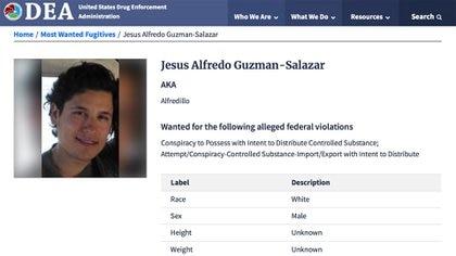 """""""Alfredillo"""", uno de los hijos del """"Chapo"""" Guzmán, ya está en la lista de los más buscados de la DEA (Foto: DEA)"""