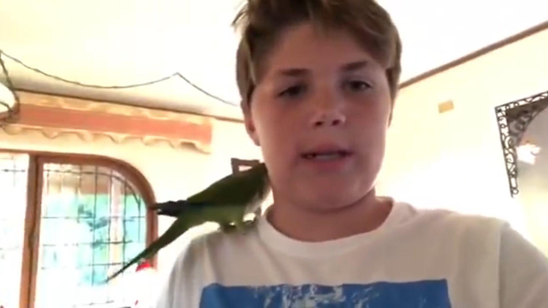 El meme de Chimuelo surgió a partir del video del niño despidiendo a su mascota.