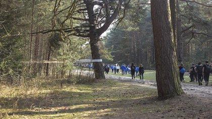 Los jóvenes marchan por el bosque, en las cintas atadas a los árboles los nombres de aquellos que murieron en el campo de exterminio
