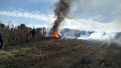 Los cuerpos de rescate trabajaron al menos dos horas para apagar el fuego (Foto: especial)