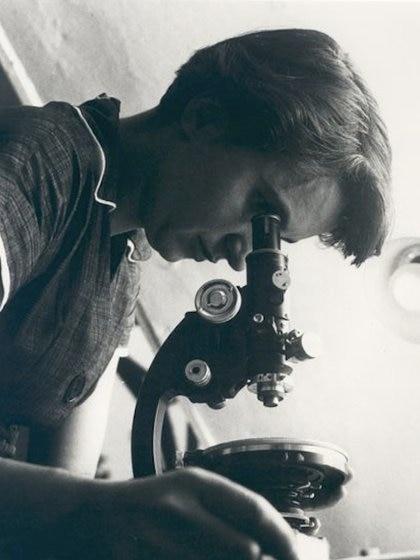 Rosalind Franklin MRC Laboratory of Molecular Biology/Jenifer Glynn