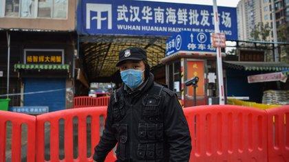 Un policía hace guardia en las afueras del mercado mayorista de mariscos de Huanan, donde se habría detectado el coronavirus en Wuhan (Foto de Hector RETAMAL / AFP)