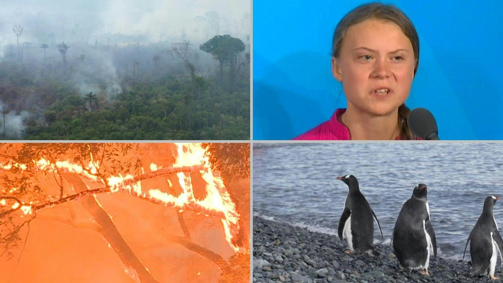 Incendios forestales gigantescos, huelgas escolares por el clima y turismo en la Antártida, postales de la actualidad medioambiental que preocupa (AFP)