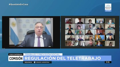 Daniel Lovera, en la reunión de la Comisión de Trabajo del Senado para analizar el proyecto de teletrabajo