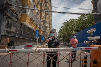 Una persona de seguridad con una mascarilla vigila un complejo residencial cerrado cerca del mercado de Yuquandong, en el distrito de Haidian, Pekín, debido a la propagación de casos de coronavirus. EFE/EPA/ROMAN PILIPEY