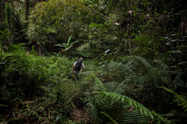 De acuerdo con el testimonio, recopilado por el medio, los habitantes tienen miedo de denunciar por las amenazas hacia los activistas, ecologistas, y pobladores (Foto: REUTERS/Eloisa Lopez)