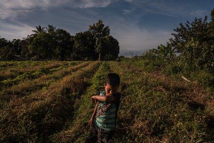 Venezuela estaba mucho peor de lo que la familia de Sebastián había imaginado (foto: Adriana Loureiro Fernandez para The New York Times)