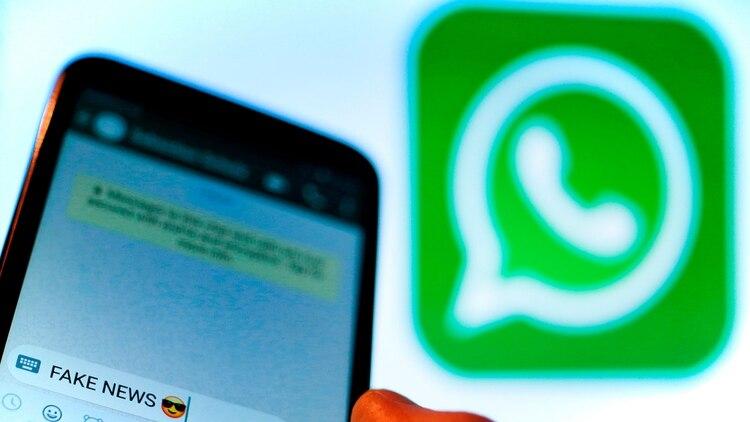"""En las redes sociales las personas se vuelven""""curadoras"""" de sus contactos para evitar noticias falsas. (Shutterstock)"""