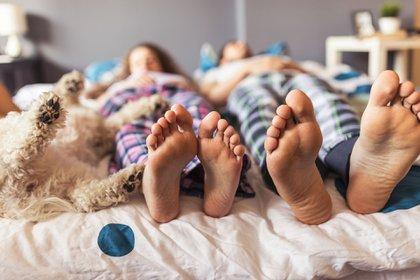 Las mascotas que duermen tanto en la cama como en el mismo cuarto afectan de manera positiva al sueño y descanso de sus dueños. (Getty)