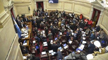 El Senado luego rechazó la norma y no se consiguió la legalización (Gustavo Gavotti)