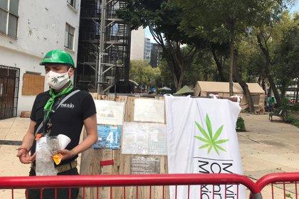 El plantón 420 impulsado por Movimiento Cannábico Mexicano (MCM), grupo de activistas que buscan la legalización de esta planta y que así los usuarios puedan consumir sin que los consideren delincuentes, siguen a las afueras del Senado de la República.  (Foto: Antonio San Juan/Infobae)