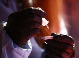 Coronavirus: el gobierno bonaerense alertó sobre el alto porcentaje de contagiados con la variante Manaos en La Plata