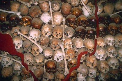 Cráneos de víctimas de las masacres de los jemeres rojos de Pol Pot, expuestos en un museo en Camboya (Shutterstock)