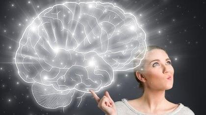 Ejercitar y desarrollar el cerebro es uno de los los aspectos fundamentales para la longevidad y la buena calidad de vida durante la adultez(iStock)
