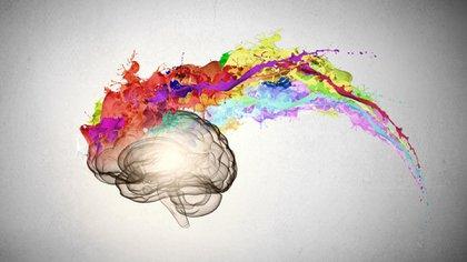 Una de las características principales del cerebro humano consiste en su capacidad para hilar historias (Shutterstock)