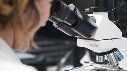 La inmunidad contra el SARS-CoV-2 podría durar ocho meses o más