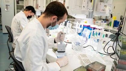 Detectan nuevas variantes de coronavirus en Estados Unidos, pero aún no se sabe cuál riesgosas pueden ser