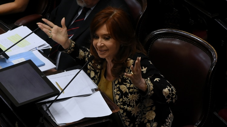 La ex presidenta Cristina Kirchner (Nicolás Stulberg)