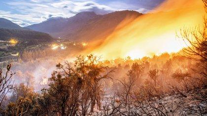 El incendio arrasó cerca de 8 mil hectáreas de bosque (Fotos: Alejandro Chaskielberg / Instagram alejandrochaskielberg)
