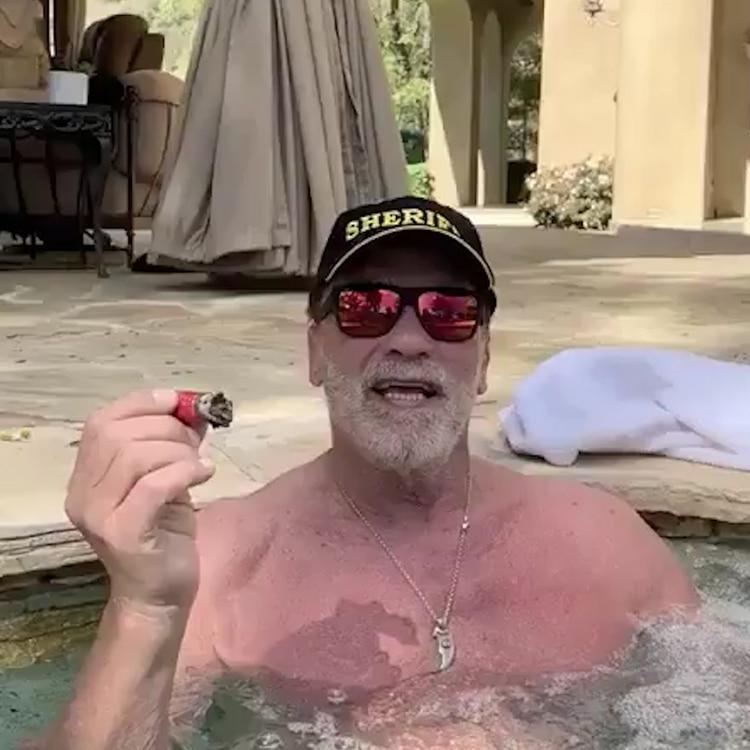 Bajo el sol de California, en el burbujeo de su jacuzzi y disfrutando un buen puro y una copa. Así animó el actor Arnold Schwarzenegger aconsejó quedarse en casa.