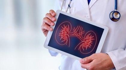 En Estados Unidos se realizó por primera vez un trasplante de riñón a partir de la donación de una mujer que está viviendo con el virus del VIH/sida. En la Argentina, antes de fin de año, se harían este tipo de donaciones a partir de donantes con VIH. (Getty)