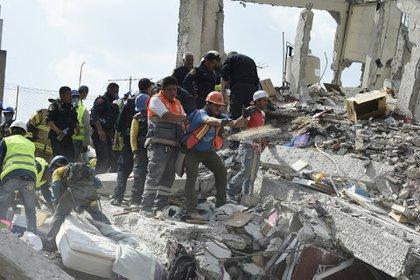 Rescatistas, nacionales e internacionales, así como la sociedad civil, se lanzó a las calles para ayudar en los minutos y días posteriores al terremoto (Foto: AFP)