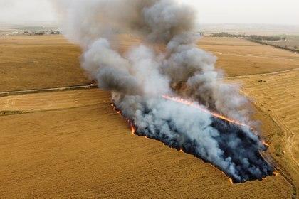 En los últimos días terroristas palestinos reanudaron el lanzamiento de globos incendiarios desde la Franja de Gaza hacia Israel (REUTERS/Amir Cohen)