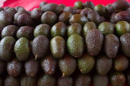 México también envía a EEUU frutas y verdurasFOTO: VICTORIA VALTIERRA /CUARTOSCURO.COM