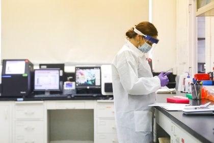 Una científica trabaja con pruebas de COVID-19 en Nueva York (REUTERS/Brendan McDermid)