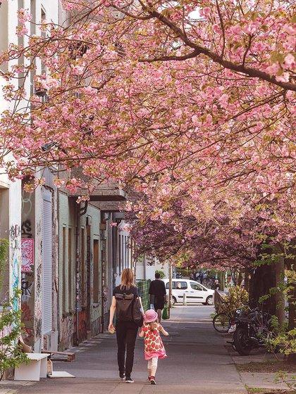 Los paseos en barco por el río y los canales son excelentes en primavera, pero, en general, el ciclismo es la mejor manera de moverse (@visit_berlin)