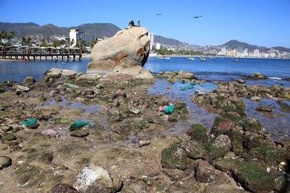 El fondo marino era observable en Caleta, Caletilla y Dominguillo. (Foto: CARLOS ALBERTO CARBAJAL /CUARTOSCURO.COM)