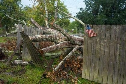 Un árbol derribado por el huracán Laura, que aún permanece caído mientras se espera este viernes el impacto de Delta en Perry, Louisiana (REUTERS/Kathleen Flynn)