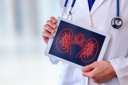 El cáncer de riñón, es el quinto más frecuente en nuestro medio, detrás del de mama, colon, próstata y pulmón