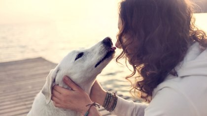Una de las conclusiones a las que llegaron los investigadores es que las mascotas pueden distinguir si sus dueños están felices o enojados (Getty Images)