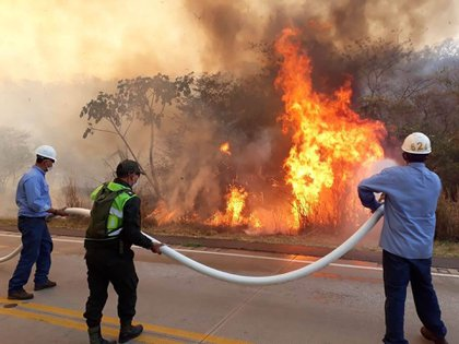 Imágenes de la devastación y las acciones de personal que intentan sofocar el fuego en Bolivia
