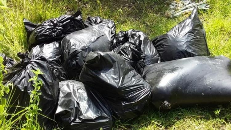 Así fueron encontrados los restos humanos en Veracruz (Foto: Twitter)
