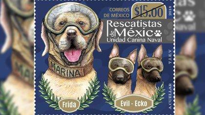 Frida, Evil y Ecko, de los binomios caninos de la Armada mexicana, ya tienen su sello postal