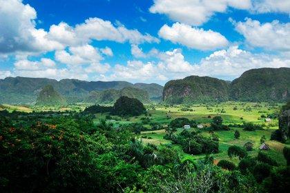 La provincia de Pinar del Río, en el interior del oeste de Cuba, es un tesoro de maravillas naturales, con kilómetros de cadenas montañosas y campos de tabaco. La región también abarca el Valle de Viñales, posiblemente uno de los lugares más hermosos de todo el país