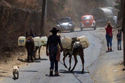 CIUDAD DE MÉXICO, 07ABRIL2021.- Desde hace 50 años se utilizan burros para entregar agua en los pueblos de San José Obrero, conocido como San José de los Burros y en Santa Cruz Alcapixca.  Foto: Graciela López / Cuartoscuro.com