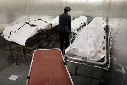 Los cadáveres en las morgues neoyorquinas ocupan las camillas y no hay tiempo para realizar autopsias - REUTERS/Andrew Kelly
