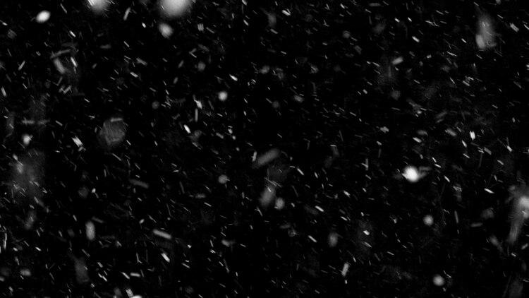 Los copos de nieve se pueden observar en una variedad aparentemente interminable de formas y tamaños (Shutterstock)
