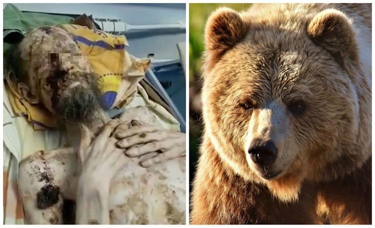 Un grupo de cazadores halló a Alexander (a la izquierda en la imagen) en el interior de la guarida, y lo trasladaron al hospital (Foto: The Siberian Times/Pixabay)