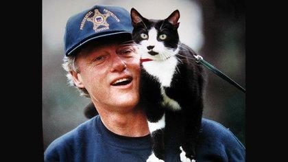 El famoso gato Socks fue el primer felino mascota de la Casa Blanca y llegó para romper la tendencia del imperio canino de todos los presidentes estadounidenses.