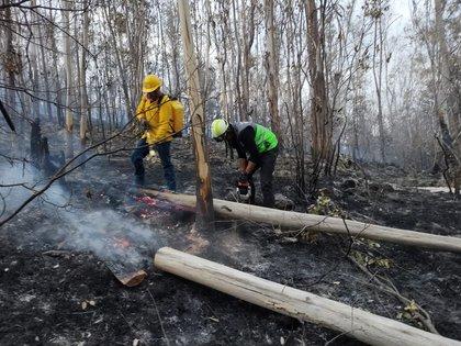 Se informó que el incendio logró ser controlado (Foto: Twitter @SGIRPC_CDMX)
