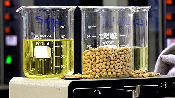 El biodiésel impacta económicamente al agregar valor al poroto de soja que se transforma en aceite