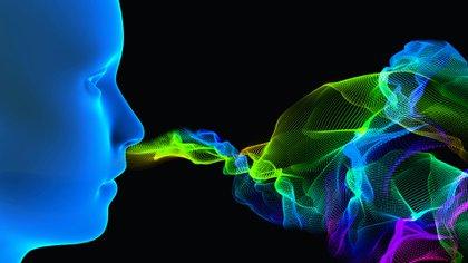 """""""El virus aparece utilizar conexiones neuroanatomical, tales como el nervio olfativo, para alcanzar el cerebro"""", señalaron los investigadores (Shutterstock)"""