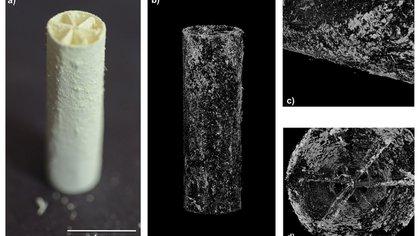 Las etapas del proceso de mineralización de las estructurasde papel en la creación de órganos en laboratorio (Gulden Canci-Unal y otros/Scientific Reports)