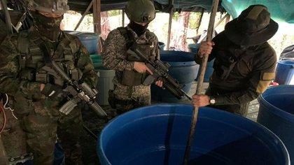 Destruyen laboratorio donde frente 'Alfonso Cano' producía estupefacientes en Nariño. Foto: fuerzas militares.