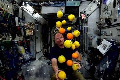 Scott Kellycon fruta fresca a bordo de la Estación Espacial Internacional(Scott Kelly/NASA )